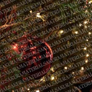 「クリスマス01」の女子向け無料素材