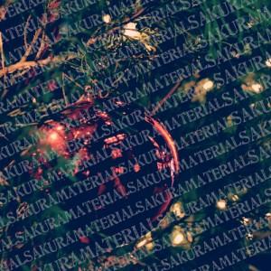 「クリスマス02」の女子向け無料素材